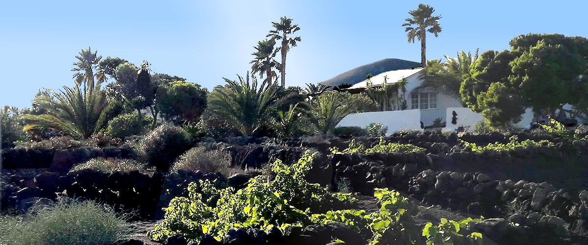Ferienwohnung Lanzarote Casa Calma