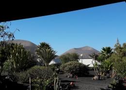 Ferienwohnung Casa Calma | Blick in den Garten